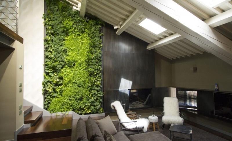 Il giardino verticale in casa (1)